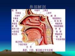 外耳道炎很普遍的症状表现有哪些?